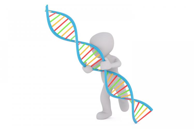 Projet de loi bioéthique, pour un consensus prudent